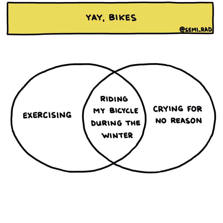 semi-rad chart: riding my bicycle during the winter