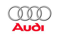 Audi Client Logo
