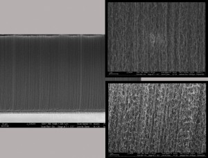 This montage includes images of carbon nanotube forests. New research explains why the CNT forests have less stiffness than expected. (Source: Georgia Tech)