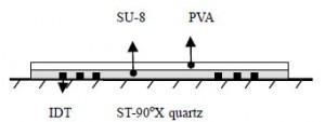 Structure of a Love wave humidity sensor (Source: IOA)