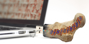 In the search for ways to store data permanently, ETH researchers have been inspired by fossils. (Source:ETH Zurich)