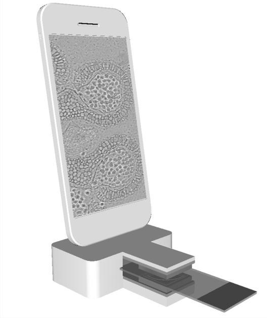 IMECmicroscope
