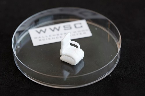 The tiny chair made of cellulose is a demonstrational object printed by the 3D bioprinter at Chalmers University of Technology. (Source: Peter Widing)