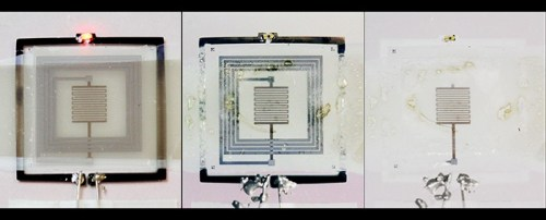 A device is remotely triggered to self-destruct. A radio-frequency signal turns on a heating element at the center of the device. The circuits dissolve completely. (Source: Scott White, University of Illinois)