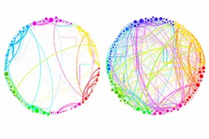 "This diagram demonstrates the simplified results that can be obtained by using quantum analysis on enormous, complex sets of data. Shown here are the connections between different regions of the brain in a control subject (left) and a subject under the influence of the psychedelic compound psilocybin (right). This demonstrates a dramatic increase in connectivity, which explains some of the drug's effects (such as ""hearing"" colors or ""seeing"" smells). Such an analysis, involving billions of brain cells, would be too complex for conventional techniques, but could be handled easily by the new quantum approach, the researchers say. (Source: MIT)"