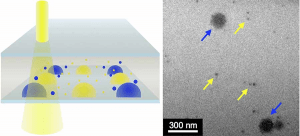 By mixing combinations of gold nanoparticles (yellow arrows) with other nanoscale crystals (blue arrows) in the LCTEM (at left), chemists showed their technique works. (Images by Lucas Parent, UC San Diego)