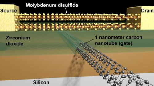 Schematic of a transistor with a molybdenum disulfide channel and 1nm carbon nanotube gate. (Source: Sujay Desai/Berkeley Lab)