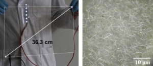 Left, photograph of a large-scale silver nanowire-coated flexible film. Right, silver nanowire particles. (Credit: S.K. Yoon, Korea University)