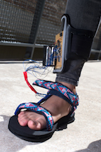 Four strategically placed sensors were built into the sole of a prototype shoe created by Rice University engineering students. The sensory feedback device is intended to prevent falls in people with impaired sensation in their feet. (Source: Rice University)