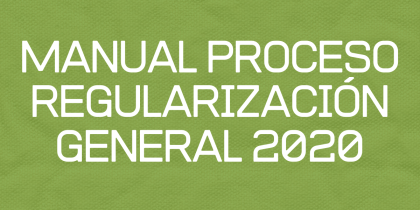 MANUAL PROCESO REGULARIZACIÓN GENERAL 2020