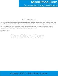 Experience Letter For Web Developer Free Download