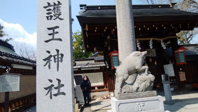護王神社いのしし