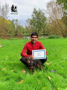 Semper-Dogz-éducateur-canin-nantes-cholet-diplôme-canin-Oly