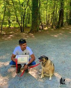 Semper-Dogz-éducateur-canin-nantes-cholet-diplome-canin-Molda