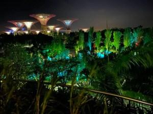 I Marina Bay Gardens di notte