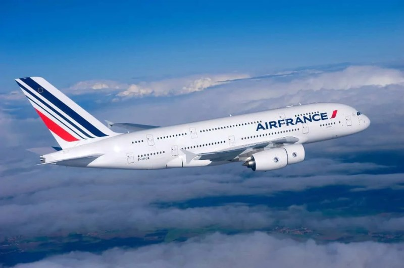 Air France volare con gli animali