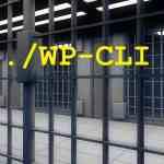 Como criar um usuário ssh preso com Jailkit no Debian!