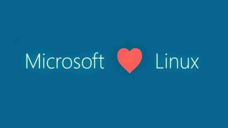 Microsoft e Linux