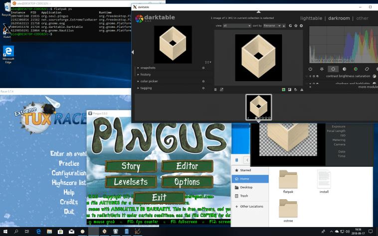 flatpak-para-windows-WSL-flatpak