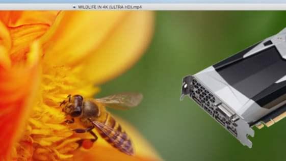 Wine, VLC, Wireshark e outros aplicativos são atualizados