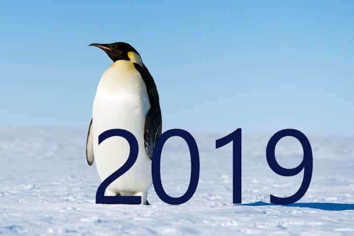 Previsões para o código aberto em 2019