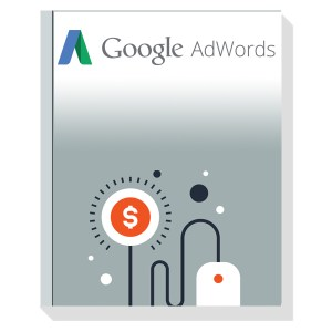 google adwords paketi