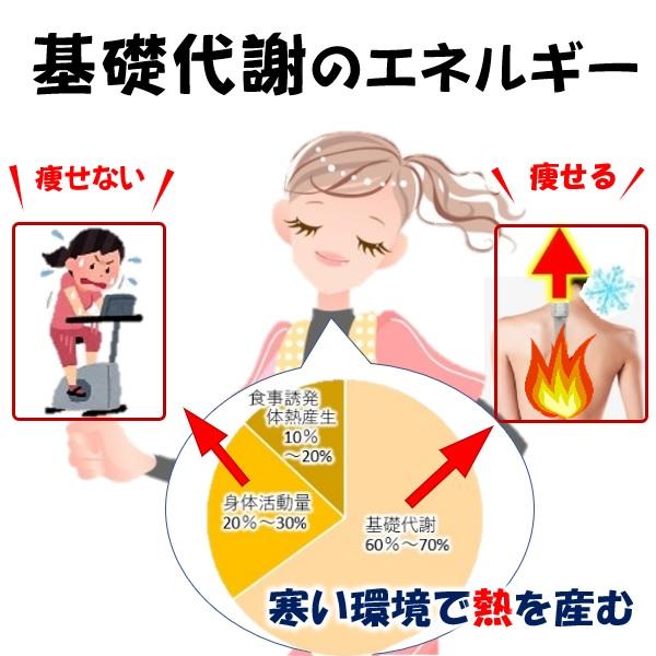 ひと工夫で痩せる運動4基礎代謝のエネルギー