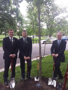 mark daly, sean haughey, eamo ocuiv tree planting capitol hill