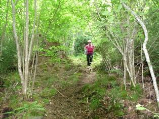 Ruta ST75 Ribes a Planoles