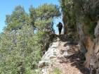 Accés a Sant Salvador del Bosc