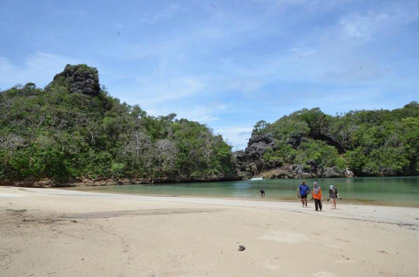Konservasi Pulau Sempu
