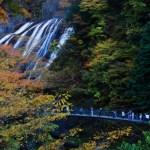 袋田の滝【2016年】紅葉とライトアップ期間・時間・見ごろは?