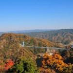 竜神大吊橋の紅葉2016年11月12日速報!見頃時期とイベント情報