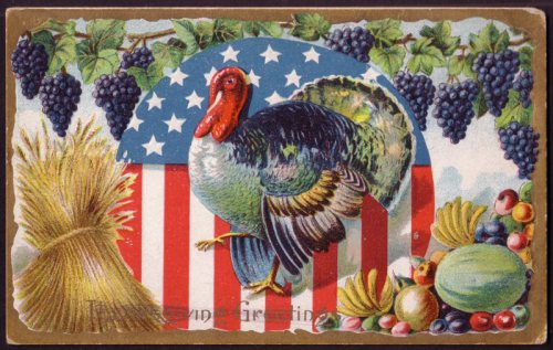 Image result for thanksgiving turkey with american flag