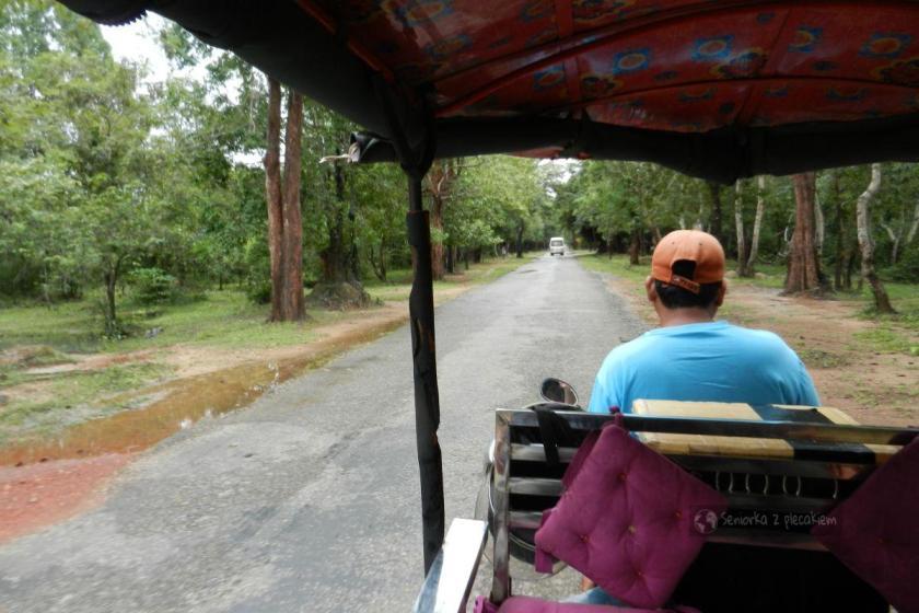 zwiedzanie kompleksu Angkor
