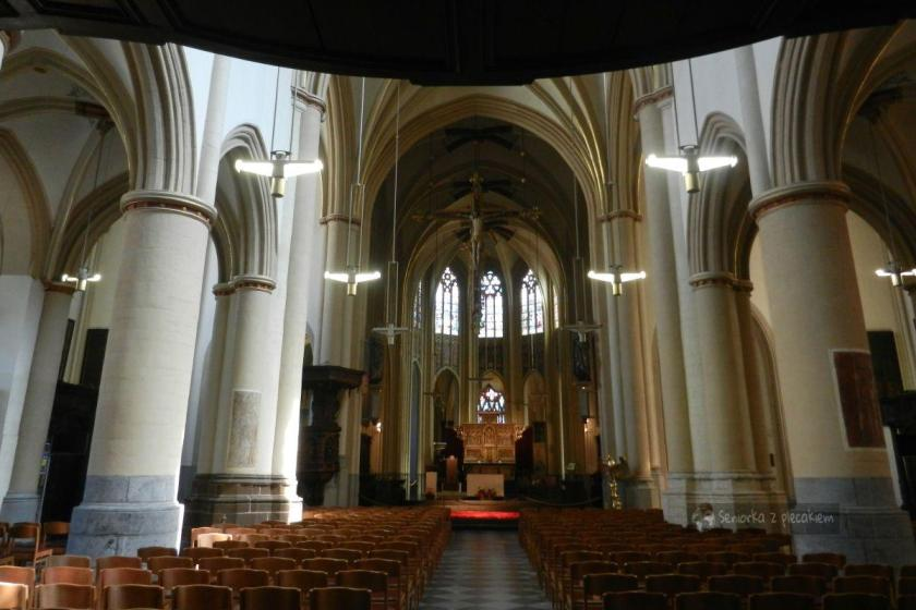 Katedra św. Kwintusa w Hasselt