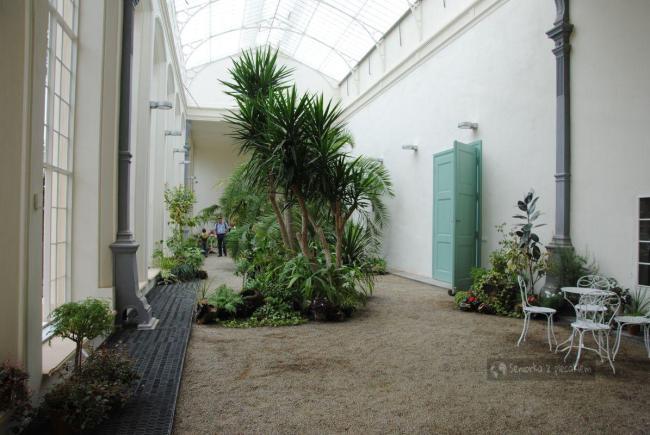 Wnętrze oranżerii w Kromieryż