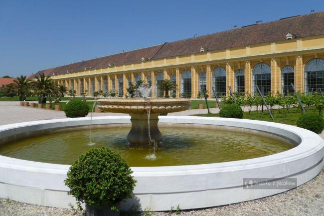 Oranżeria w pałacu Schonbrunn