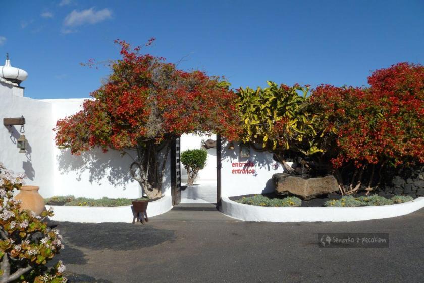 Ogród Cesara Manrique