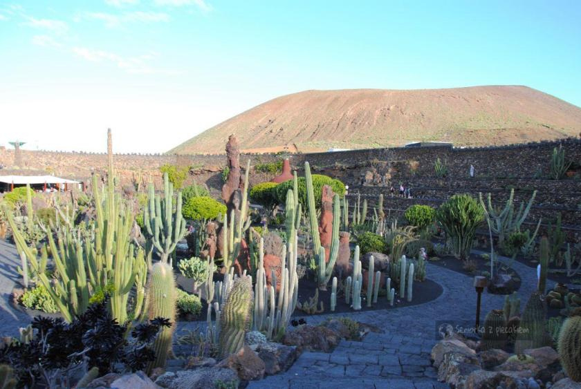 Ogród Kaktusów na Lanzarote