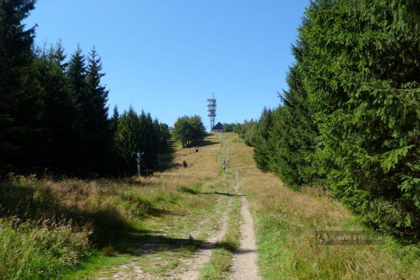 Szlak na Javorovy w Czechach