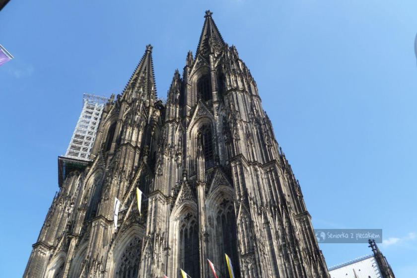 Katedra w Kolonii