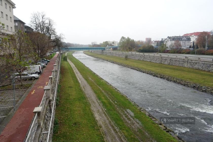 Rzeka Ostrawica