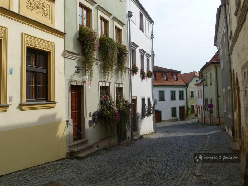 Ulice, uliczki i zaułki Ołomuńca – spacer z uśmiechem