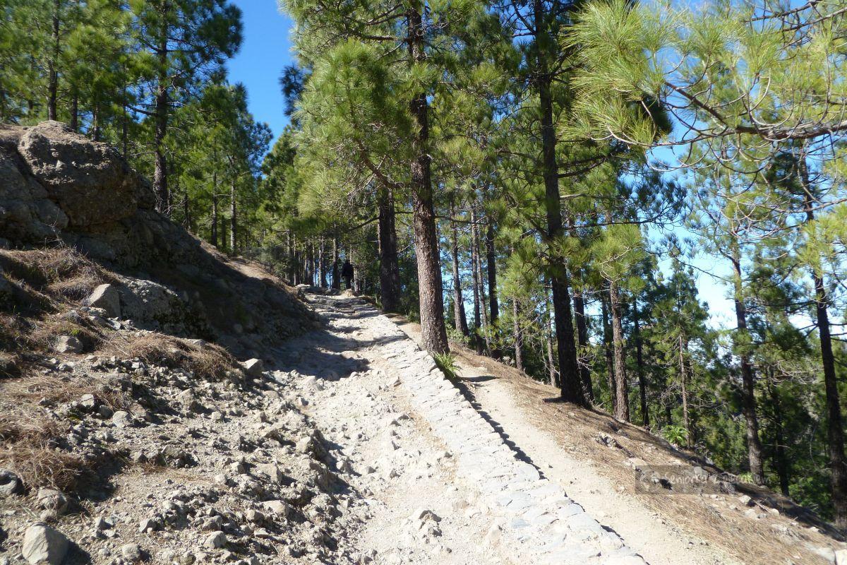 Szlak na Roque Nublo