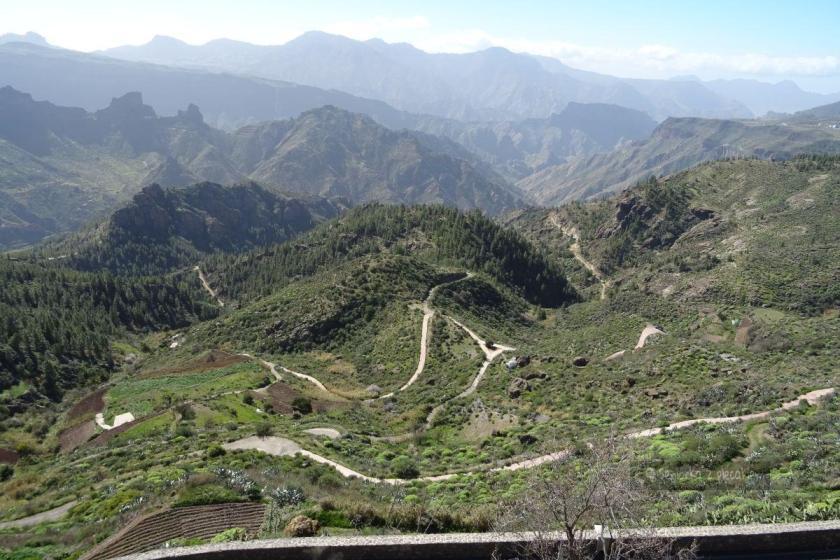 Widok z Artenary