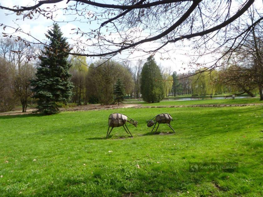 Park im. ks. Józefa Poniatowskiego
