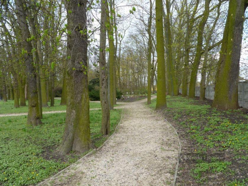 Ogród Botaniczny w Piotrkowie