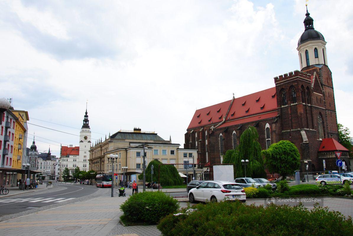 Gotycka katedra