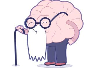 aging brain